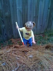 Helping with Yard Work
