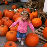 Pumkin Pickin' Good Time