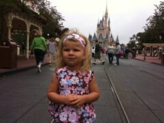 Misty Day at Magic Kingdom
