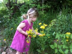 Picking Flower