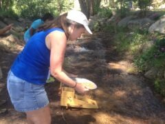 Karen Panning for Gold