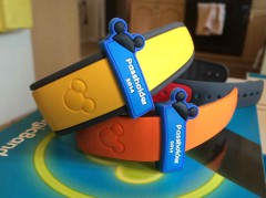 Annual Pass Magicbands